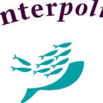 interpolis-zorgverzekeraar-zorgverzekering-fijner-lopen-orthopedische-schoenen-podoloog-orthopeed-vergoed-maatschoenen-brede-schoenen